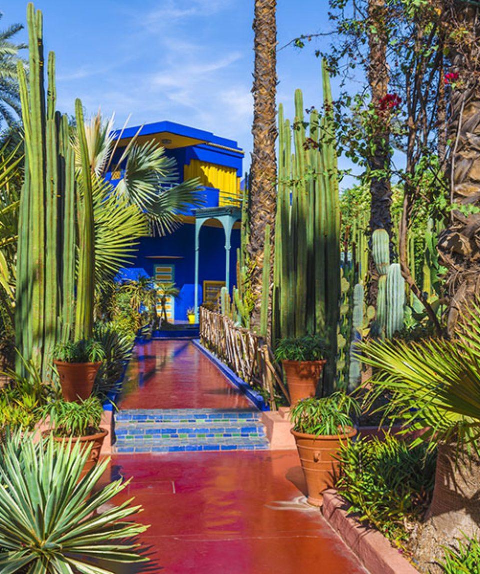 Le Jardin Majorelle, amazing tropical garden in Marrakech, Moroc