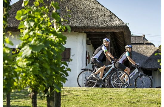 4-Ländereck Rad & Wellness Terme 3000 Slowenien
