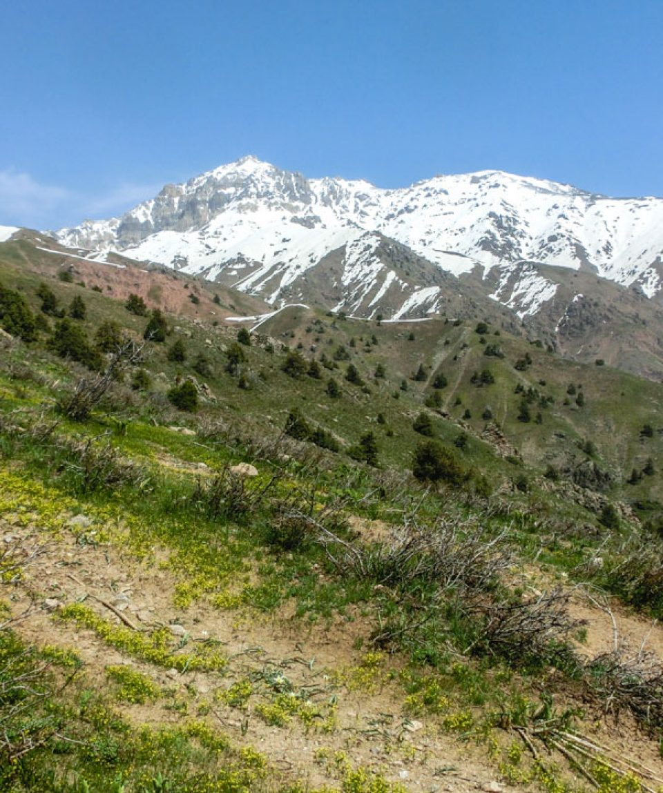 Usbekistan_Clearskies_13-70