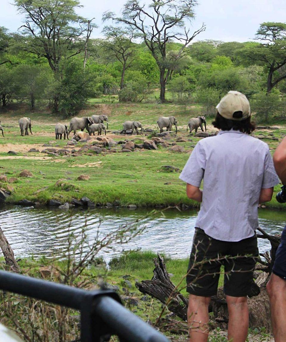 Kidogo_Bush & Beach Safari 1
